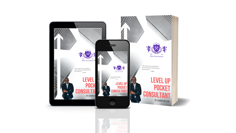 Level Up Pocket Consultant Package