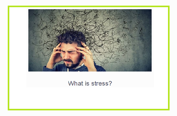English- Lesson 1 _ What Is stress.PNG
