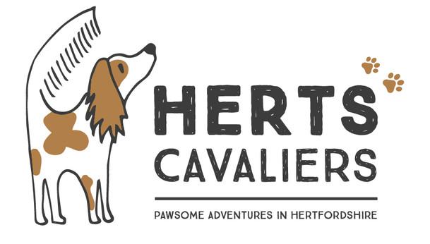 Herts Cavalier Logo