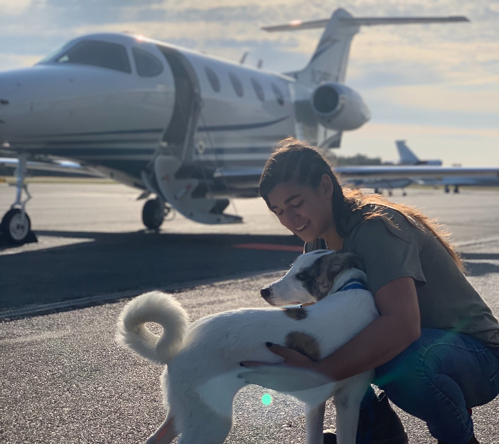 Sam%20assisting%20with%20an%20International%20dog%20rescue%20and%20re-home%20flight_edited.jpg