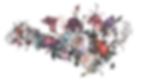 flower-002-colors-hotd.png