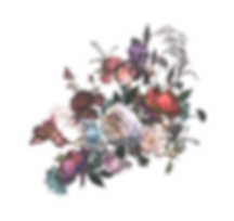 flower-003-colors-hotd.png