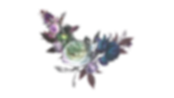 flower-001-colors-hotd.png