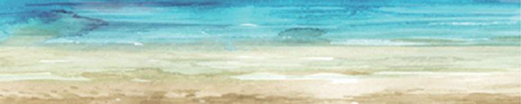 summer dreams 1.jpeg