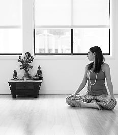 buddhiststudies training