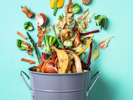 "Do ciclo do ""lixo"" ao ciclo do alimento"
