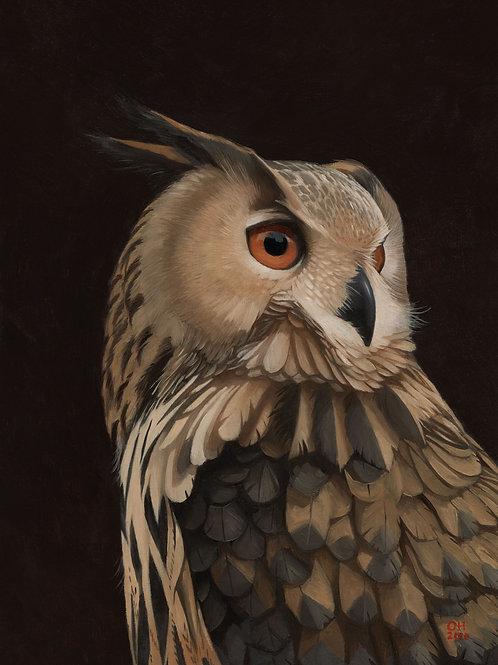 Eagle Owl - Limited Edition print