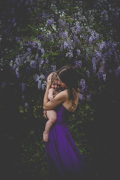 wisteria-6.jpg
