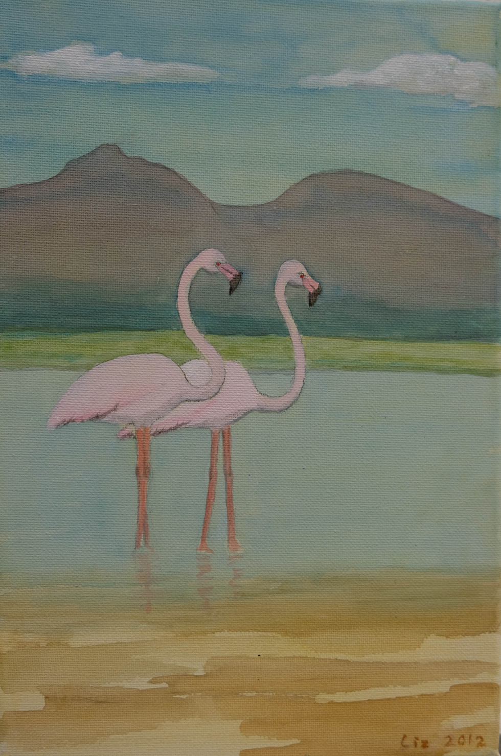 Flamingoes  by Liz Finch