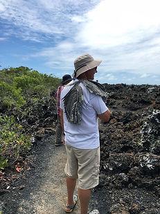 Mates in the Galapagos 2.jpg