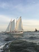Sailing in NY Harbor