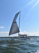 Sailing Rascal