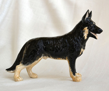 Black & Tan German Shepherd