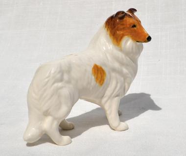 White Collie - Sable Head