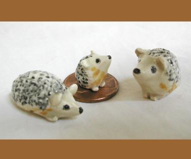 Hedge Hog Family
