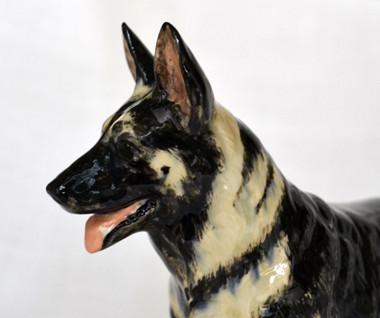 Head Detail German Shepherd