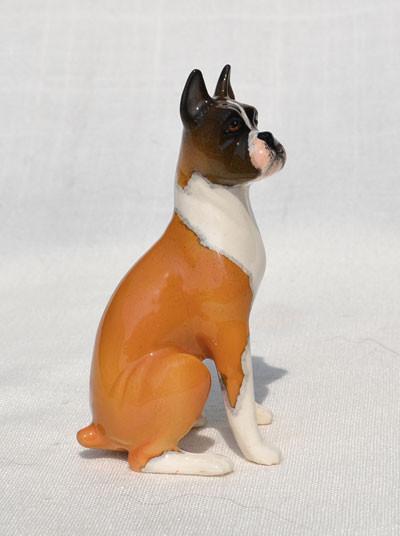 Sable Boxer