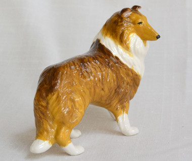 Shaded Sable Collie