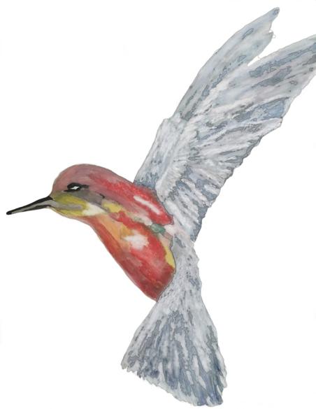 Julianna Peric Humming Bird Oil Painting