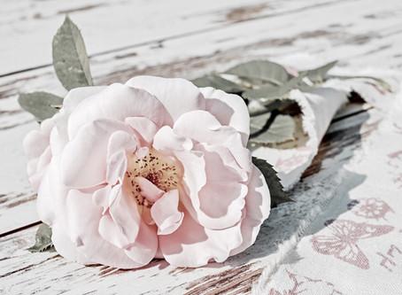 APOTHECARY: Romantic Rose Bath Salts