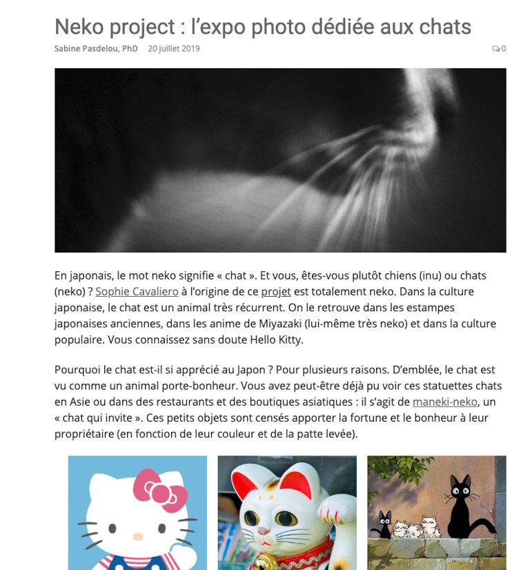 Neko_Ariticle.jpg