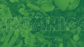A matéria orgânica utilizada na produção do fertilizante organomineral é benéfica às plantas?