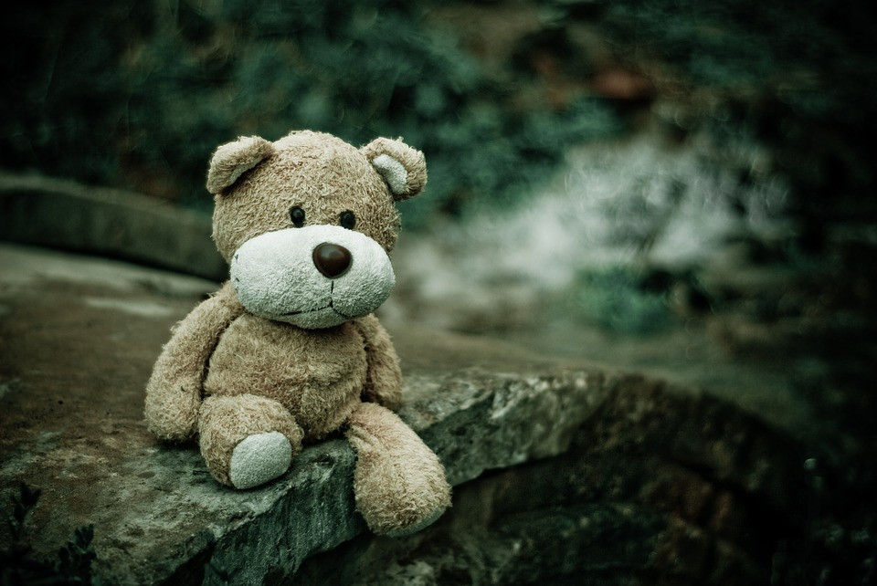 teddy bear sitting alone on a rock