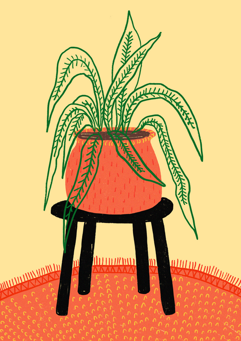 Plant on a table