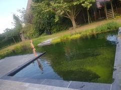 zwemvijver.jpg