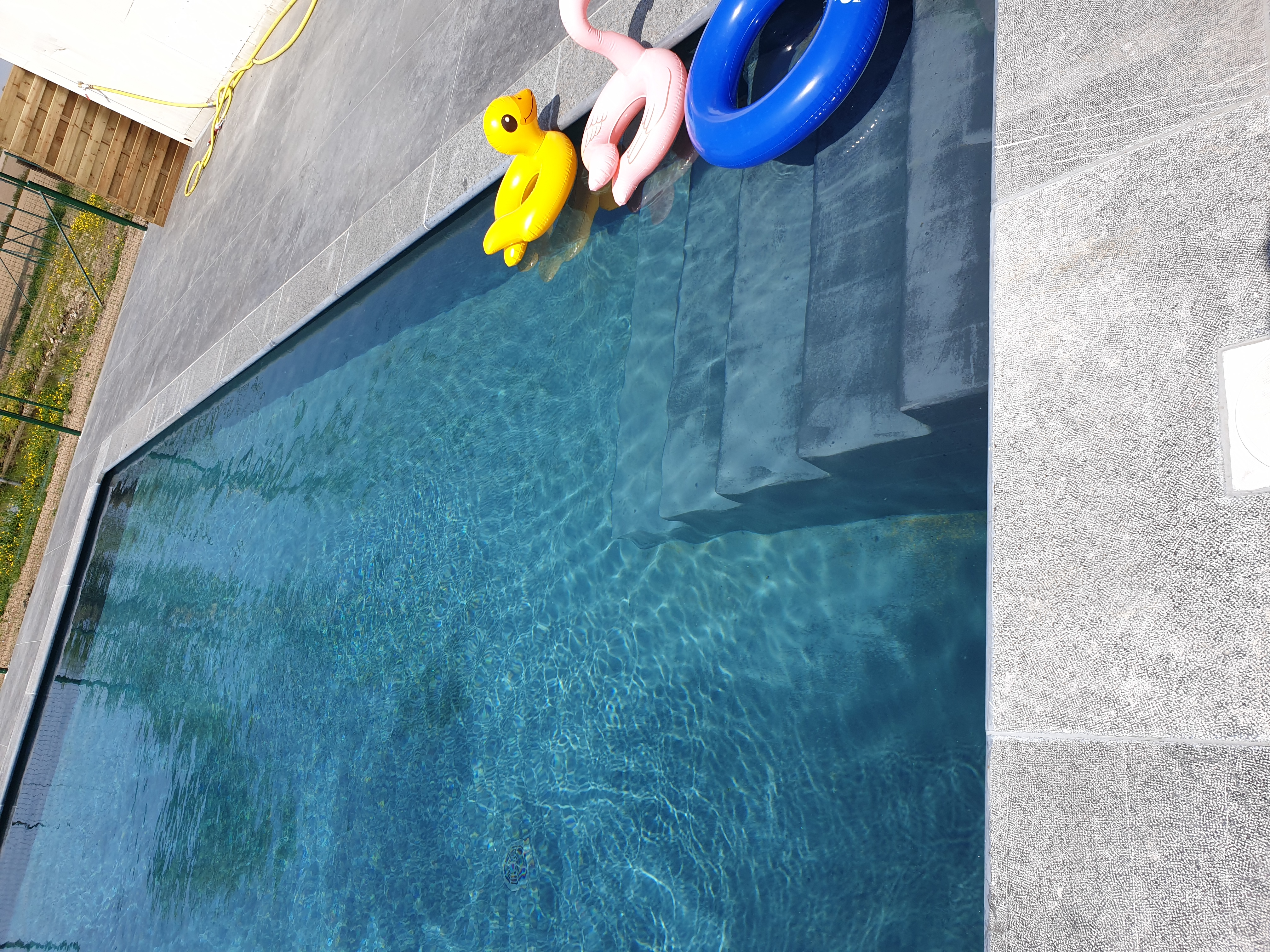 Natuur zwembad
