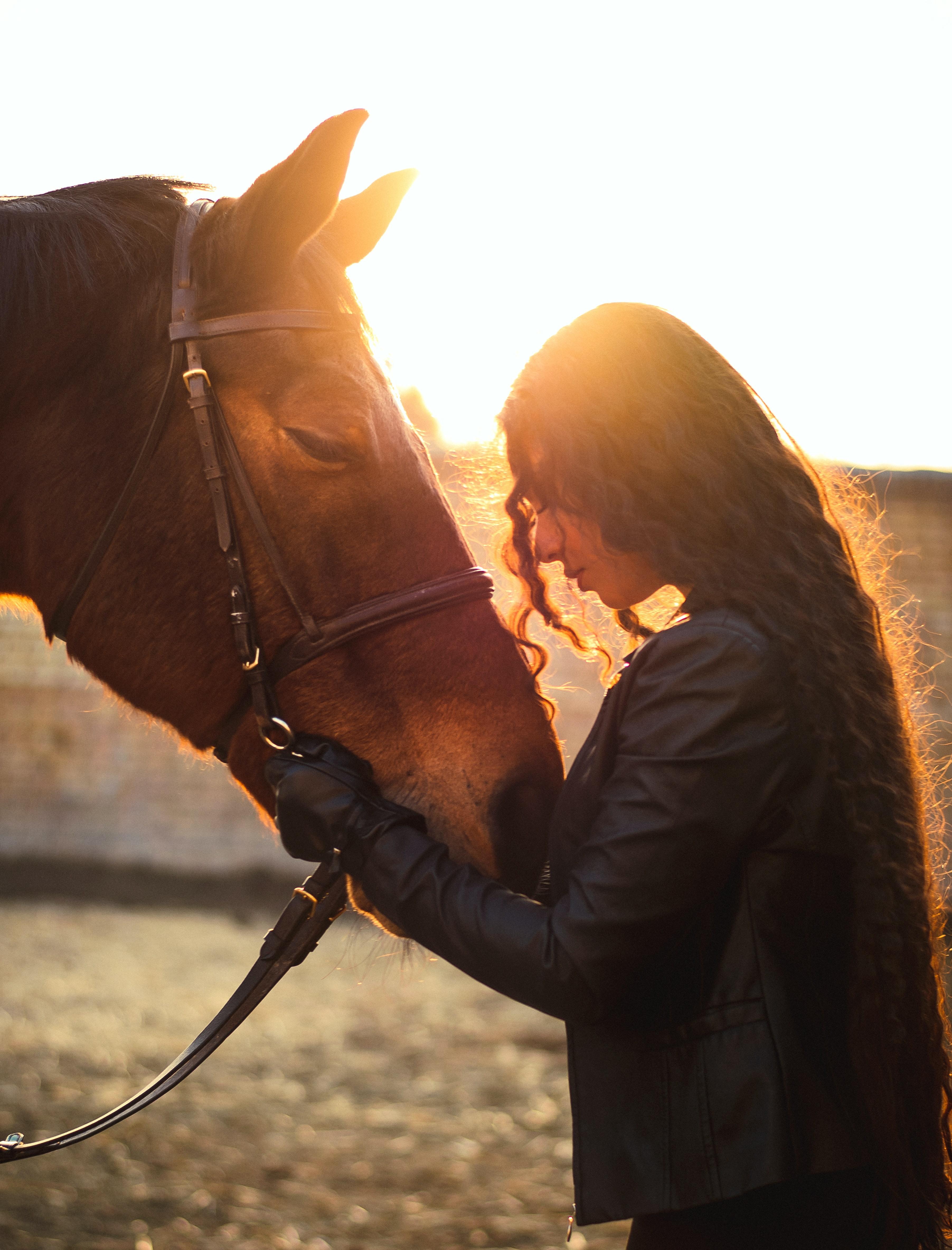 Equine Facilitated Wellness Sister Sense