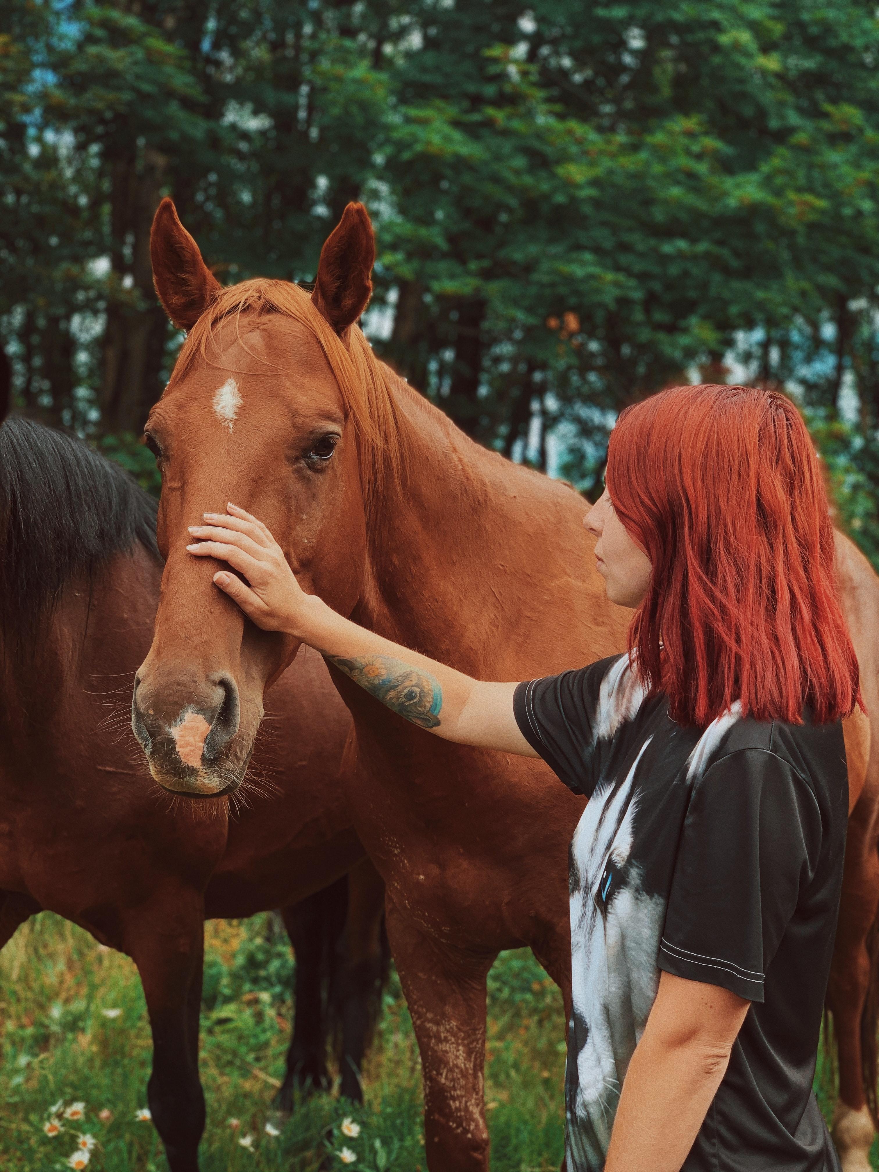 Equine Facilitated Wellness-Teens Rock