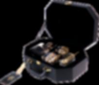 BP-Suitcase-24K.png