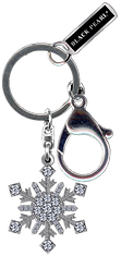 BP_KEYCHAIN.png