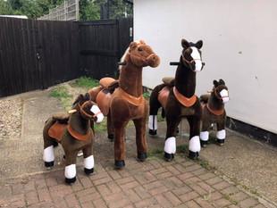 Pony Family.jpg