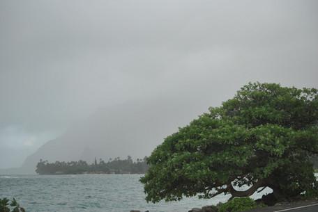 Hawaiian East Coast