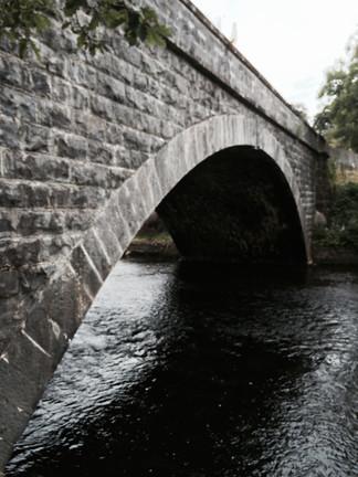Poison Bridge