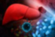 hepatit b virüsü karaciğeri etkileyen bir virüstür.
