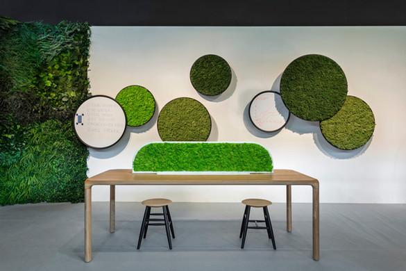 greenmood-about-ambiance-g-line-1-arcit1