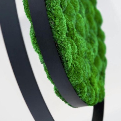 ring-moss-acoustic-suspensions-plant-gre