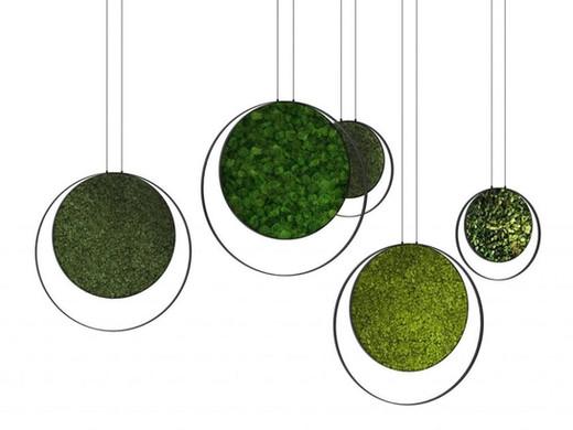 b_RING-Green-Mood-Mur-végétal-418614-rel