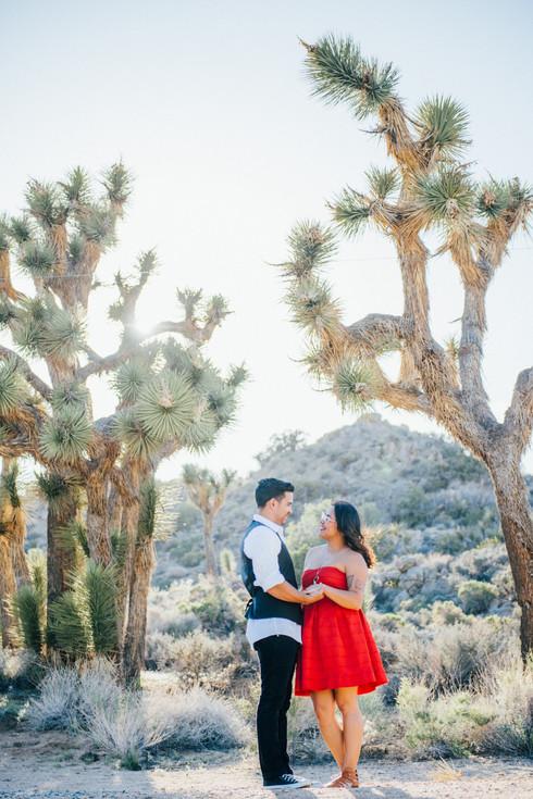 Engagement-Joshua_Tree-Ashley_Lynn_Richards