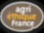 Logo-AEF-1.png