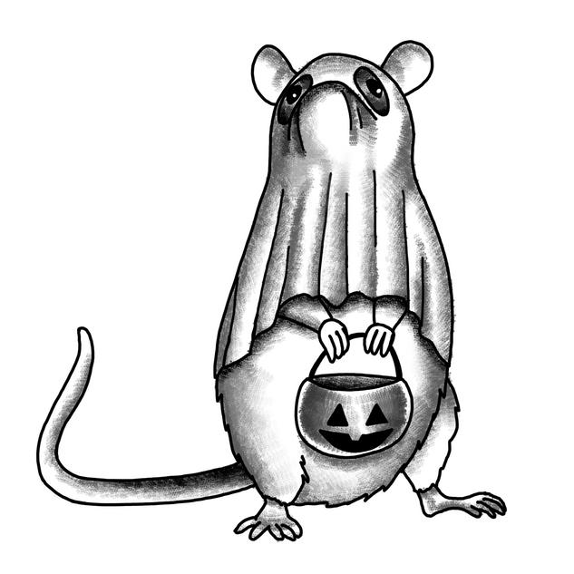 Halloween Rat
