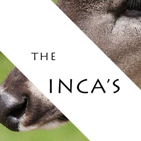 The Inca's Treasure