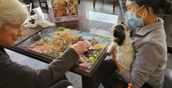 Puzzles w Jubi