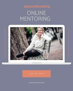 Groundhandling Angebot Online Mentoring.