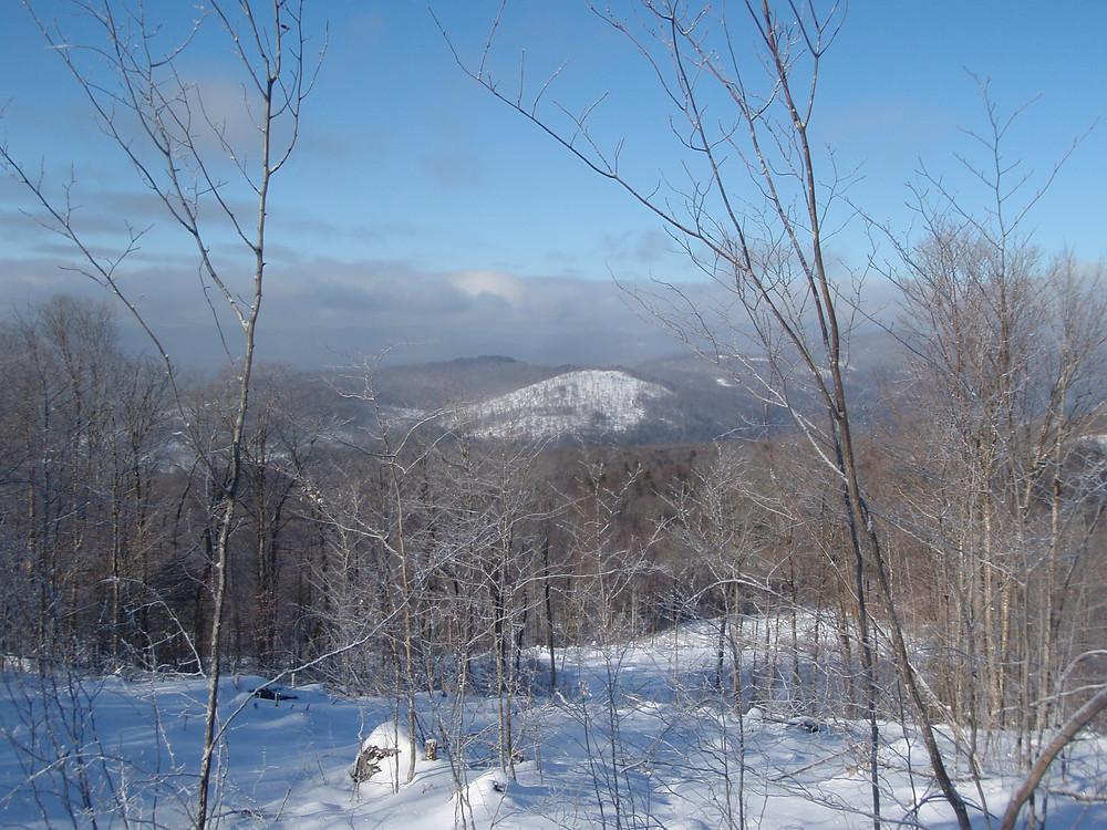A ridge line view, Vermont