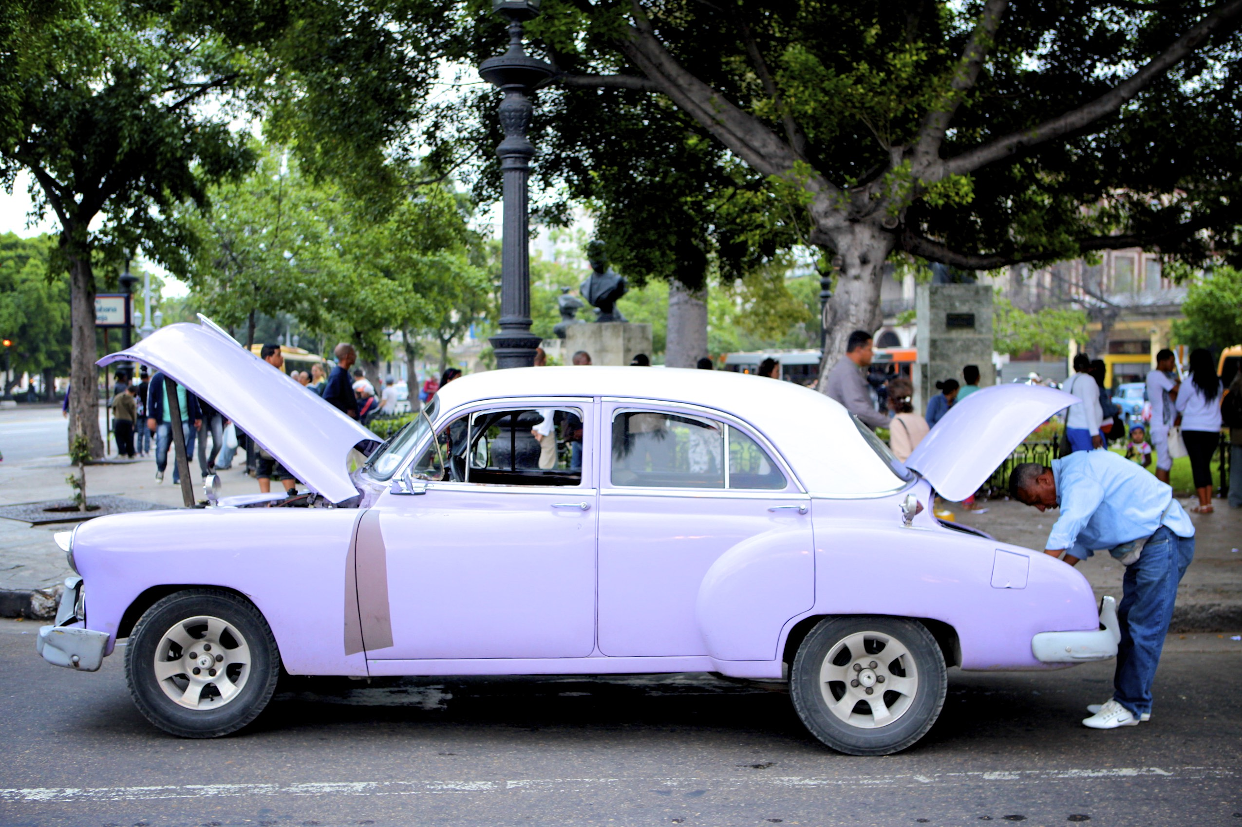 Lavender Taxi