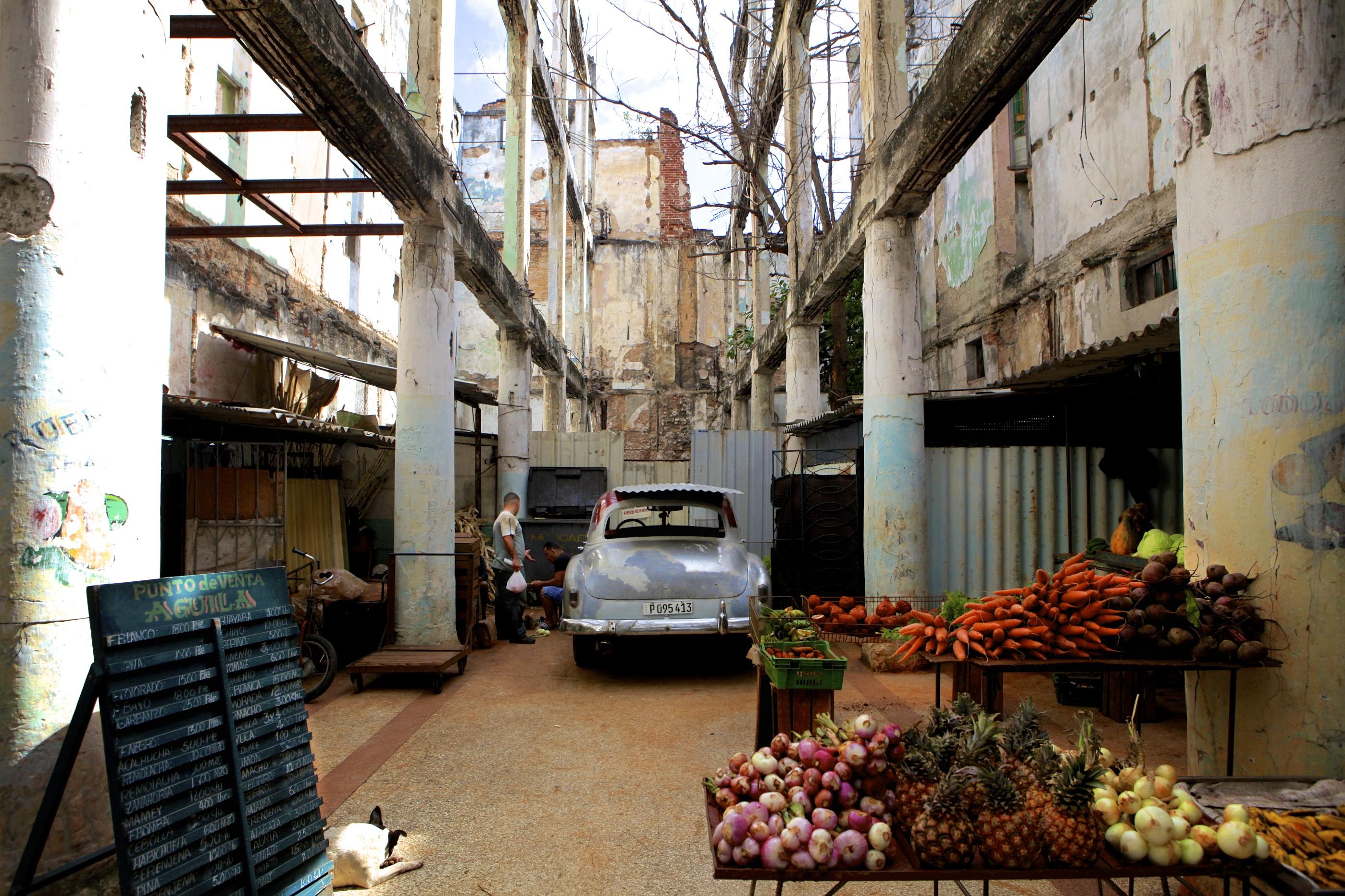 Mercado Vegetal - Industria